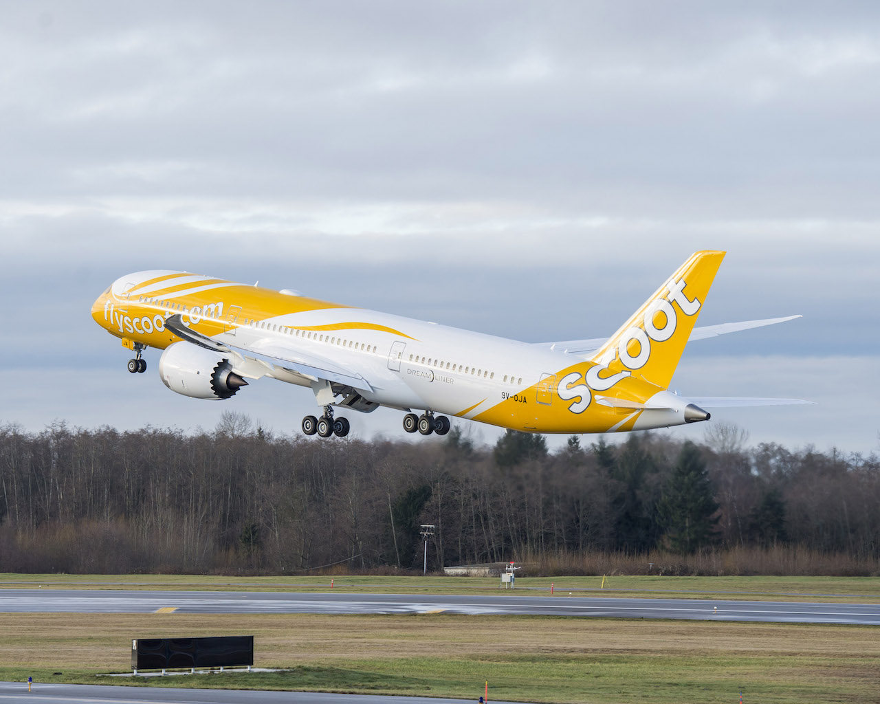 Scoot 787 (Boeing).jpg