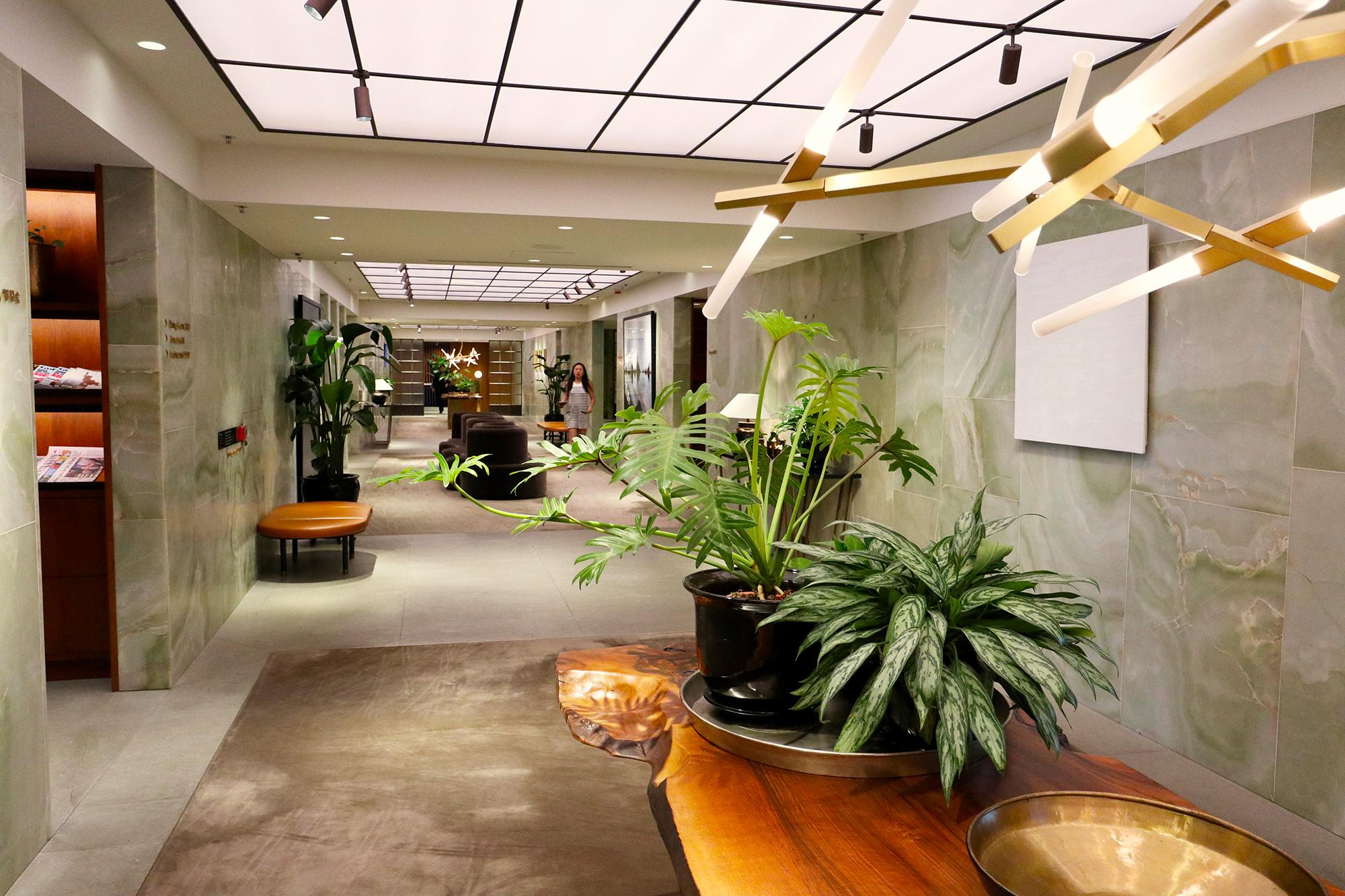 Corridor Plant