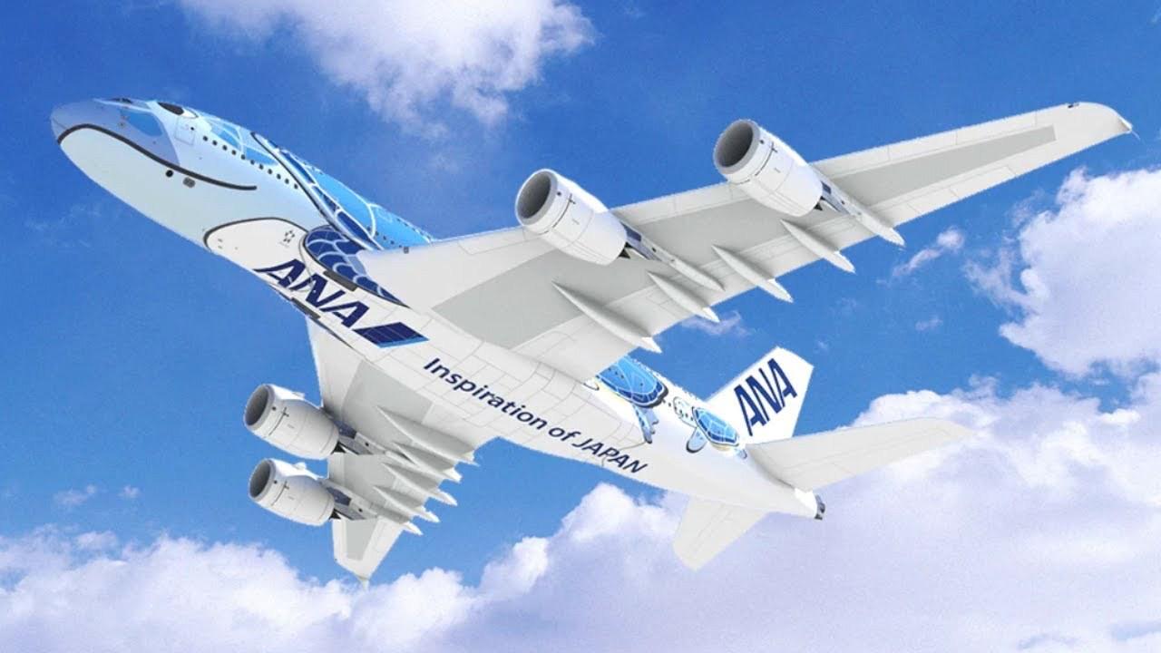 ANA A380 Underside (ANA Holdings Inc).jpg
