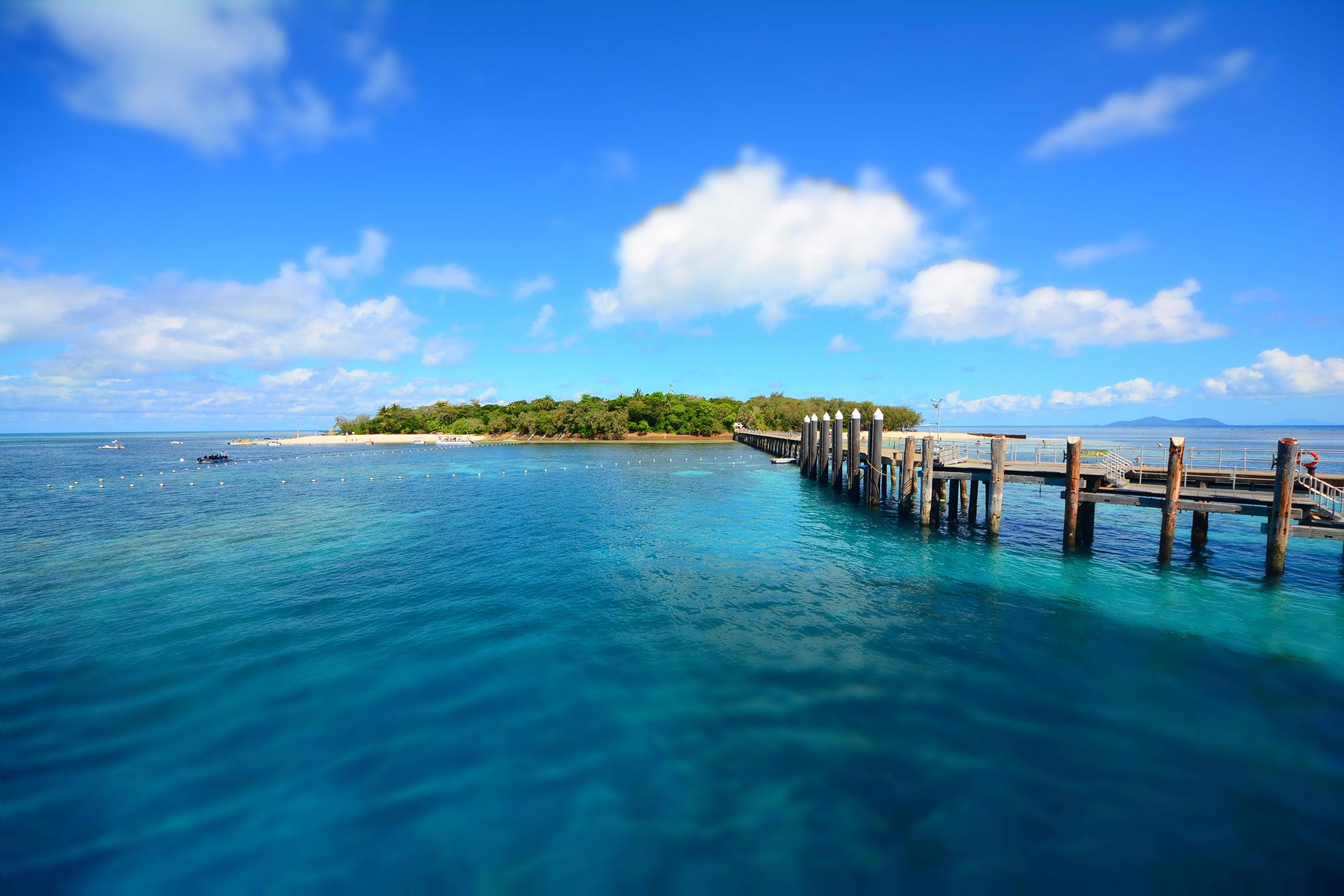 Great Barrier Reef (Jodi Nelson).jpg