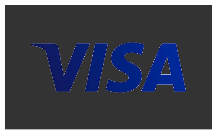 Visa Card.png