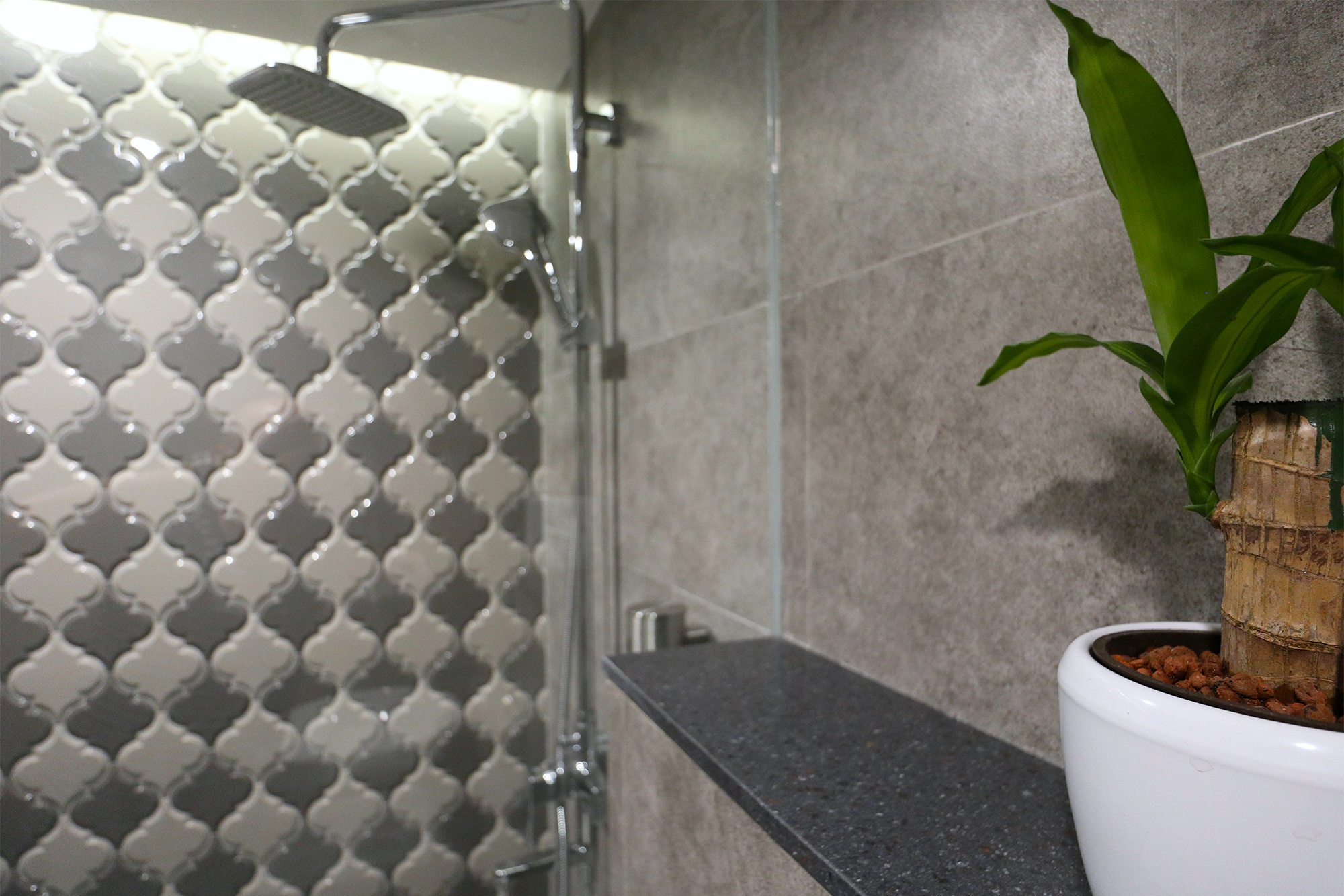 Shower Plant.jpg