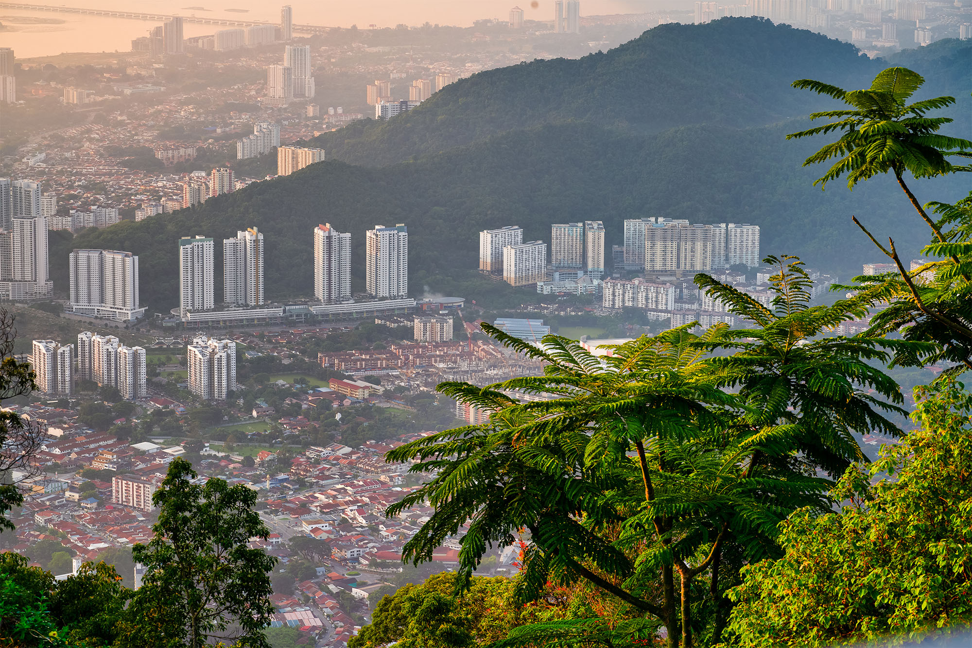 Penang (Christopher Harriot)