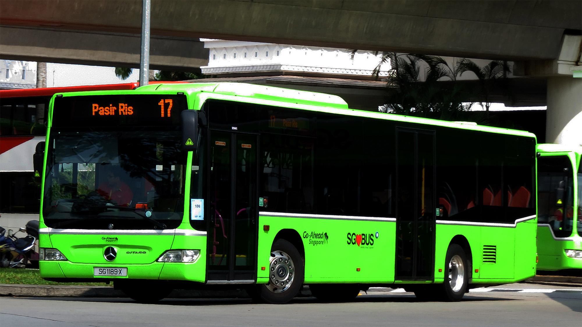 Singapore Bus.jpg