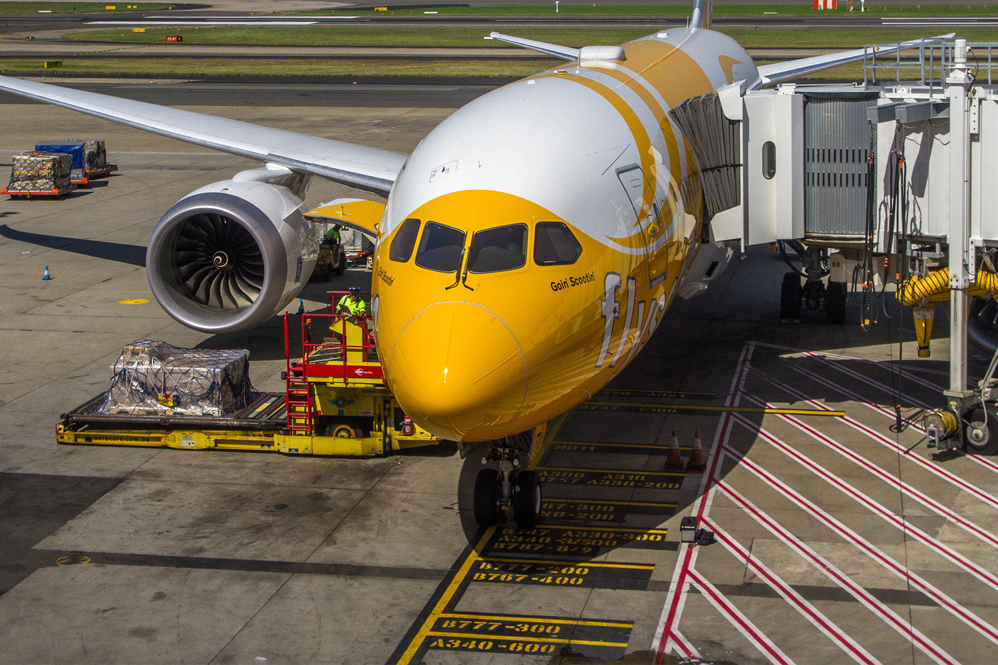 Scoot 787 at Gate (Maksym Kozlenko)