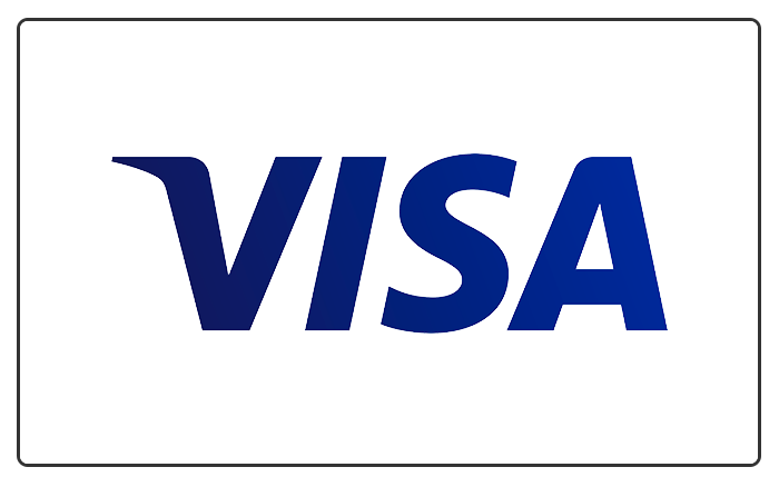Visa Card White