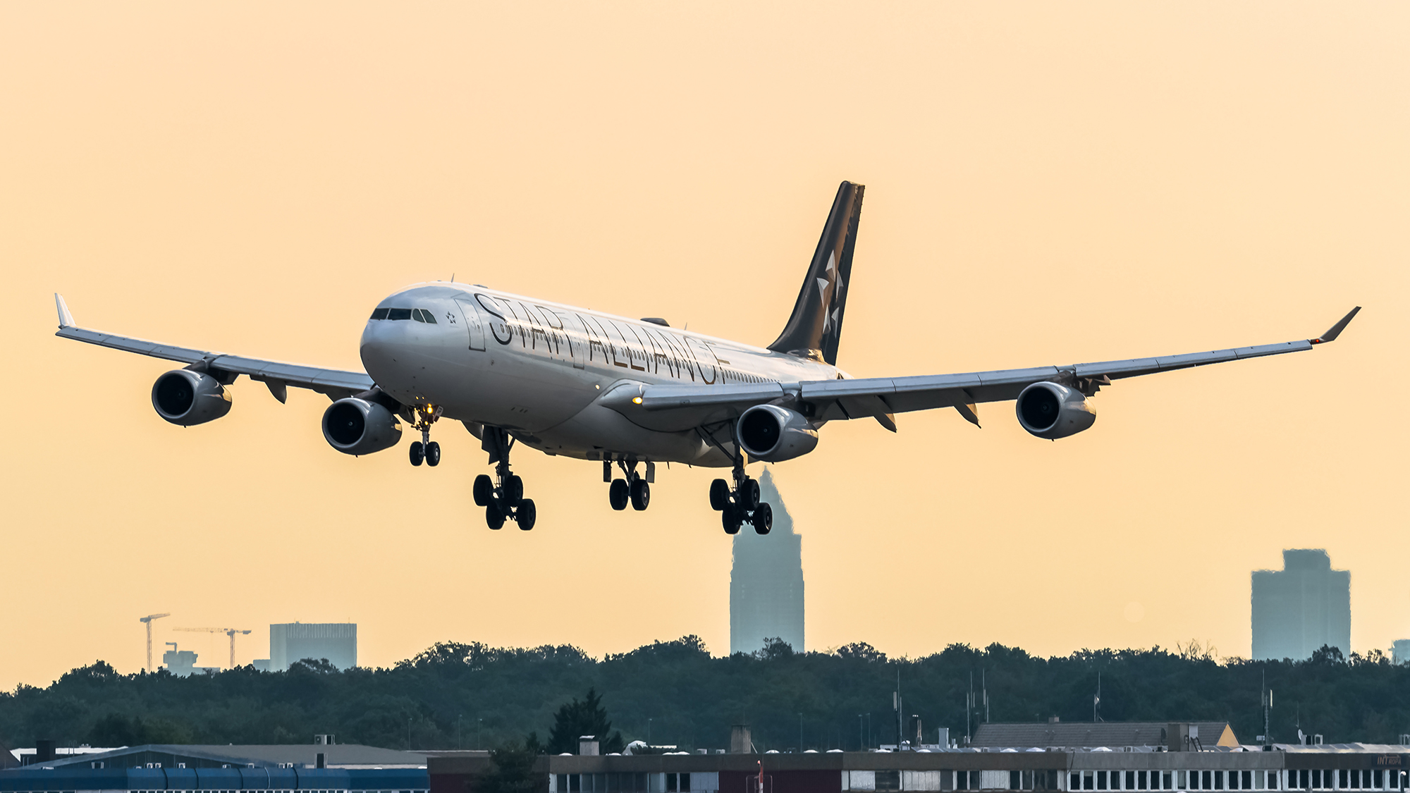 Star Alliance LH A340 (tenora SS)