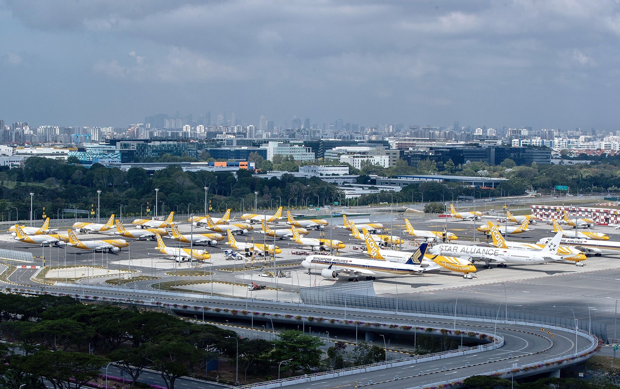 TR and SQ Aircraft Parked (Changi Airport)